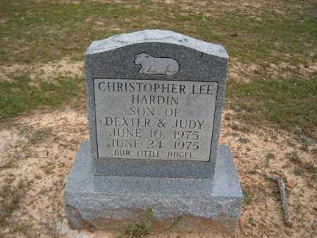 HARDIN, CHRISTOPHER LEE - Lawrence County, Arkansas | CHRISTOPHER LEE HARDIN - Arkansas Gravestone Photos