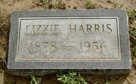 HARRIS, LIZZIE - Lawrence County, Arkansas   LIZZIE HARRIS - Arkansas Gravestone Photos