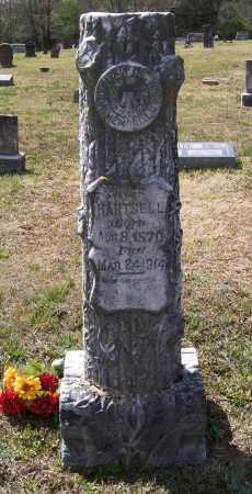 HARTSELL, WILLIAM F. - Lawrence County, Arkansas | WILLIAM F. HARTSELL - Arkansas Gravestone Photos