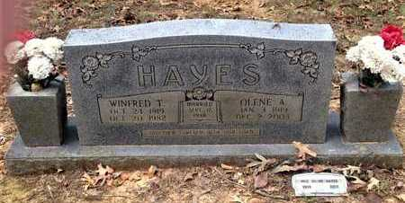 HUSKEY HAYES, OLENE A. - Lawrence County, Arkansas | OLENE A. HUSKEY HAYES - Arkansas Gravestone Photos