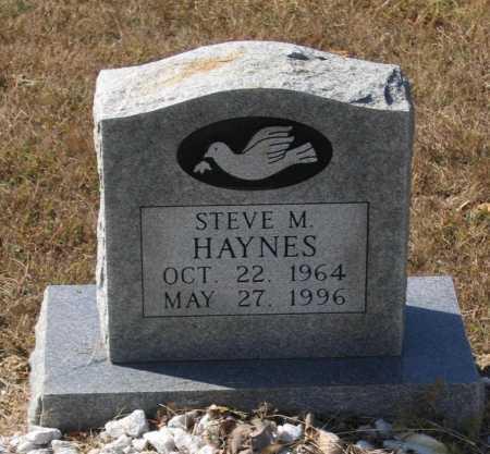 HAYNES, STEVE M. - Lawrence County, Arkansas   STEVE M. HAYNES - Arkansas Gravestone Photos