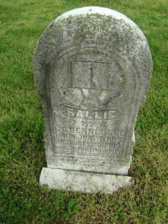 HENNESSEE, SALLIE - Lawrence County, Arkansas   SALLIE HENNESSEE - Arkansas Gravestone Photos