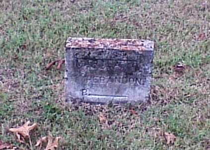 HERNDON, MARTHA E. - Lawrence County, Arkansas | MARTHA E. HERNDON - Arkansas Gravestone Photos