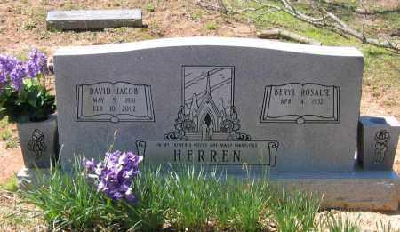 HERREN, DAVID JACOB - Lawrence County, Arkansas | DAVID JACOB HERREN - Arkansas Gravestone Photos