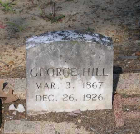 HILL, GEORGE F. - Lawrence County, Arkansas | GEORGE F. HILL - Arkansas Gravestone Photos