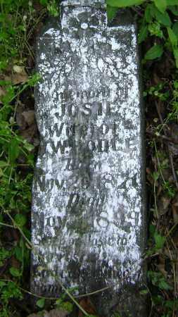 HODGE, JOSIE - Lawrence County, Arkansas   JOSIE HODGE - Arkansas Gravestone Photos