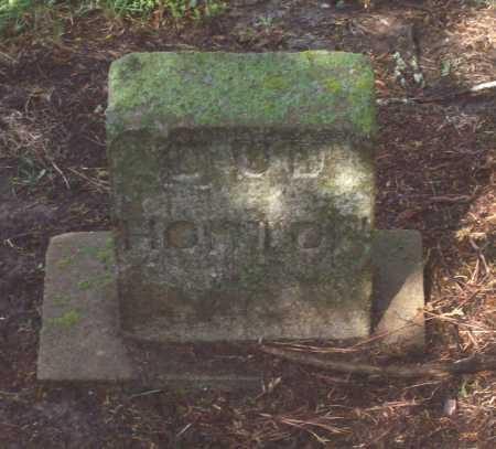 "HORTON, DUDLEY G. ""DUD"" - Lawrence County, Arkansas | DUDLEY G. ""DUD"" HORTON - Arkansas Gravestone Photos"