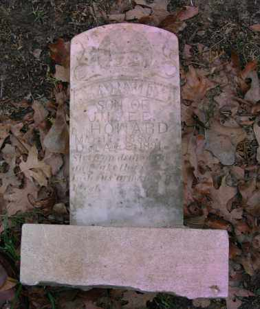 HOWARD, HARVEY - Lawrence County, Arkansas   HARVEY HOWARD - Arkansas Gravestone Photos