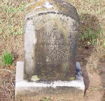 DENT HUDSON, EMMA HALL - Lawrence County, Arkansas | EMMA HALL DENT HUDSON - Arkansas Gravestone Photos