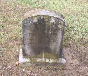 HUDSON, MADISON DEAN - Lawrence County, Arkansas | MADISON DEAN HUDSON - Arkansas Gravestone Photos