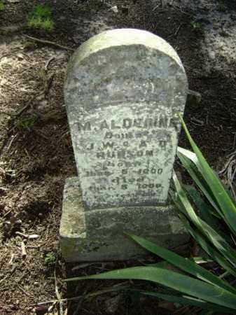 HUDSON, MADELIN ALDERINE - Lawrence County, Arkansas | MADELIN ALDERINE HUDSON - Arkansas Gravestone Photos