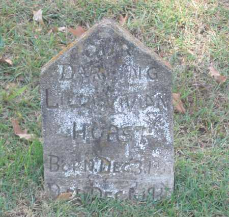 HURST, LILLY VIVIAN - Lawrence County, Arkansas   LILLY VIVIAN HURST - Arkansas Gravestone Photos