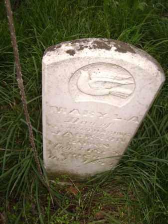 JACKSON, MARY L. A. - Lawrence County, Arkansas | MARY L. A. JACKSON - Arkansas Gravestone Photos