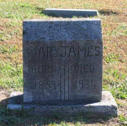 JAMES, MARY - Lawrence County, Arkansas | MARY JAMES - Arkansas Gravestone Photos