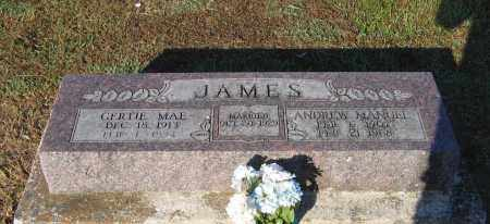 DAVIS JAMES, GERTIE MAE - Lawrence County, Arkansas | GERTIE MAE DAVIS JAMES - Arkansas Gravestone Photos