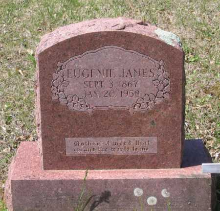 HENDRIX JANES, EUGENIA VIRGINIA - Lawrence County, Arkansas | EUGENIA VIRGINIA HENDRIX JANES - Arkansas Gravestone Photos