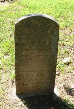 JENKINS/JINKINS, JAMES P. - Lawrence County, Arkansas   JAMES P. JENKINS/JINKINS - Arkansas Gravestone Photos