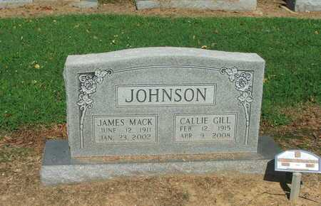 JOHNSON, REV, JAMES MACK - Lawrence County, Arkansas | JAMES MACK JOHNSON, REV - Arkansas Gravestone Photos