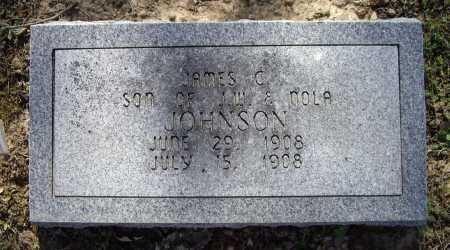 JOHNSON, JAMES C. - Lawrence County, Arkansas | JAMES C. JOHNSON - Arkansas Gravestone Photos
