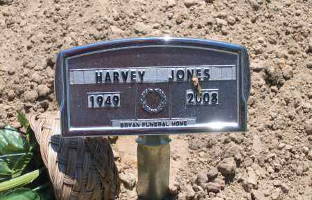 JONES, HARVEY LEE - Lawrence County, Arkansas   HARVEY LEE JONES - Arkansas Gravestone Photos
