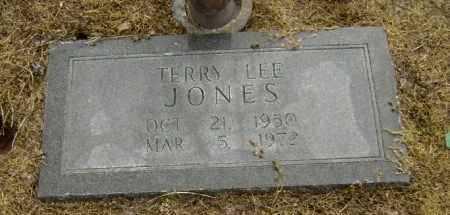 JONES, TERRY LEE - Lawrence County, Arkansas   TERRY LEE JONES - Arkansas Gravestone Photos
