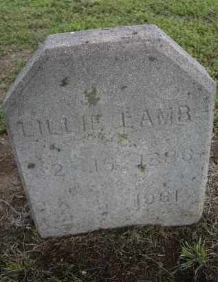 MANNING FRY, LILLIE - Lawrence County, Arkansas | LILLIE MANNING FRY - Arkansas Gravestone Photos