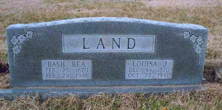 LAND, LOUISA JANE - Lawrence County, Arkansas | LOUISA JANE LAND - Arkansas Gravestone Photos