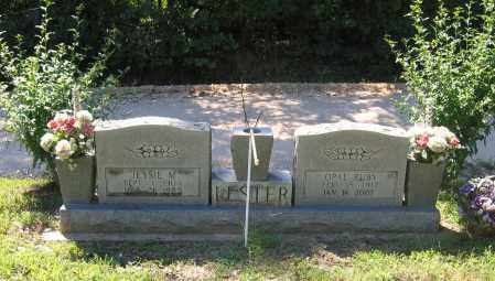 LESTER, OPAL RUBY - Lawrence County, Arkansas | OPAL RUBY LESTER - Arkansas Gravestone Photos