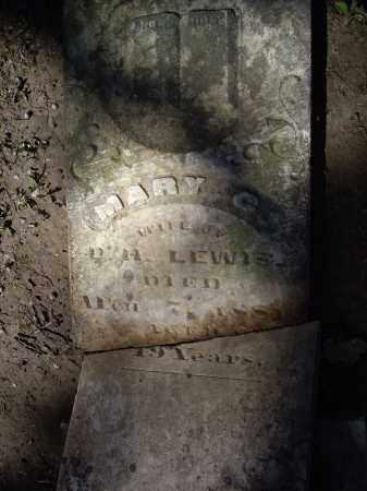 LEWIS, MARY C. - Lawrence County, Arkansas | MARY C. LEWIS - Arkansas Gravestone Photos