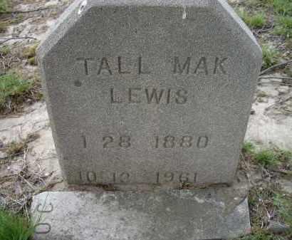 LEWIS, TAL MAK - Lawrence County, Arkansas | TAL MAK LEWIS - Arkansas Gravestone Photos