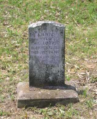 LUDWIG, ANNIE - Lawrence County, Arkansas   ANNIE LUDWIG - Arkansas Gravestone Photos