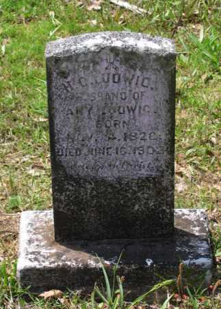 LUDWIG, HENRY C. - Lawrence County, Arkansas | HENRY C. LUDWIG - Arkansas Gravestone Photos