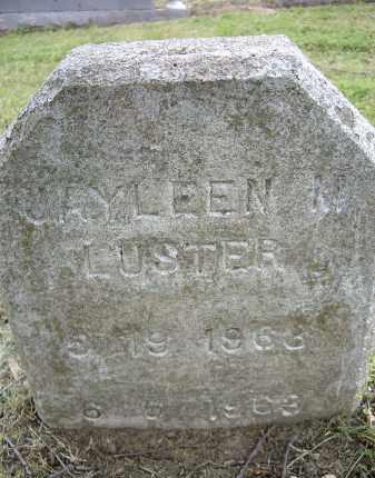 LUSTER, JAYLEEN MARIE - Lawrence County, Arkansas | JAYLEEN MARIE LUSTER - Arkansas Gravestone Photos