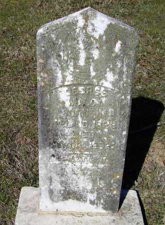 MALOY (VETERAN CSA), GEORGE - Lawrence County, Arkansas | GEORGE MALOY (VETERAN CSA) - Arkansas Gravestone Photos