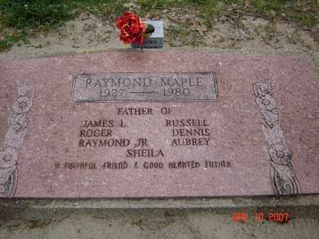 MAPLE, RAYMOND - Lawrence County, Arkansas | RAYMOND MAPLE - Arkansas Gravestone Photos