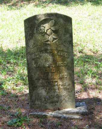 MARCHBANKS, WILLIAM C. - Lawrence County, Arkansas | WILLIAM C. MARCHBANKS - Arkansas Gravestone Photos