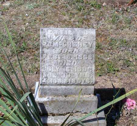 "WAYLAND MCGHEHEY, ETTA C. ""ETTIE"" - Lawrence County, Arkansas | ETTA C. ""ETTIE"" WAYLAND MCGHEHEY - Arkansas Gravestone Photos"