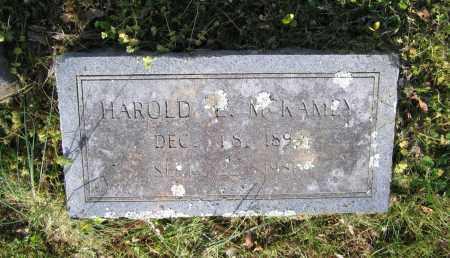 MCKAMEY, HAROLD EUGENE - Lawrence County, Arkansas | HAROLD EUGENE MCKAMEY - Arkansas Gravestone Photos