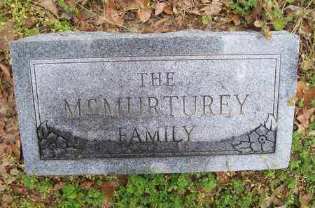 MCMURTUREY FAMILY STONE,  - Lawrence County, Arkansas |  MCMURTUREY FAMILY STONE - Arkansas Gravestone Photos
