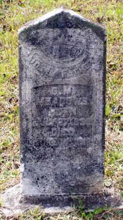 MEADOWS, GEORGE M. - Lawrence County, Arkansas | GEORGE M. MEADOWS - Arkansas Gravestone Photos
