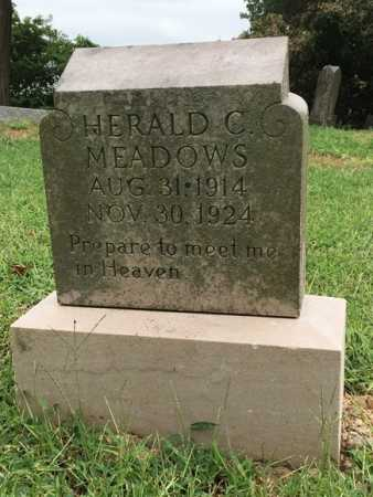MEADOWS, HERALD C. - Lawrence County, Arkansas | HERALD C. MEADOWS - Arkansas Gravestone Photos