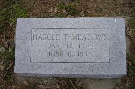 MEADOWS, HAROLD T. - Lawrence County, Arkansas | HAROLD T. MEADOWS - Arkansas Gravestone Photos