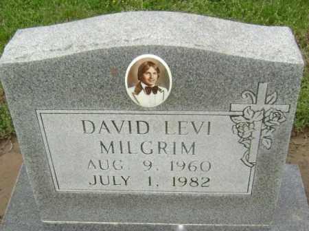 MILGRIM, DAVID LEVI - Lawrence County, Arkansas | DAVID LEVI MILGRIM - Arkansas Gravestone Photos