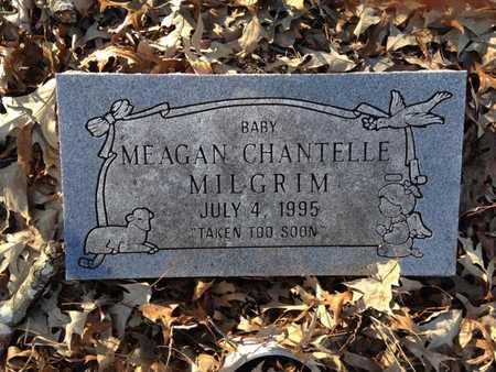 MILGRIM, MEAGAN CHANTELL - Lawrence County, Arkansas | MEAGAN CHANTELL MILGRIM - Arkansas Gravestone Photos