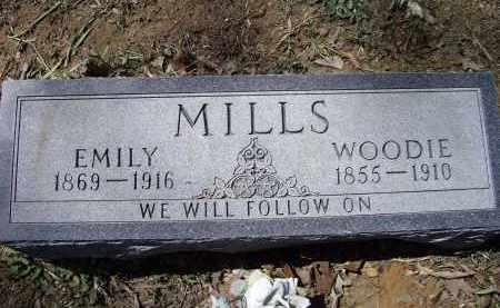 MILLS, EMILY ELIZABETH - Lawrence County, Arkansas | EMILY ELIZABETH MILLS - Arkansas Gravestone Photos