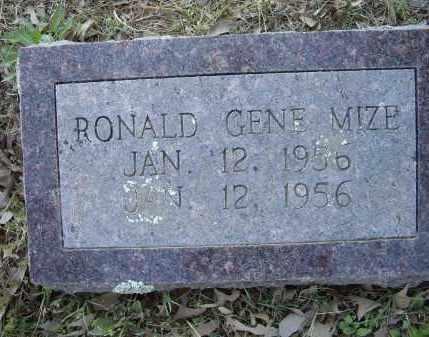 MIZE, RONALD GENE - Lawrence County, Arkansas | RONALD GENE MIZE - Arkansas Gravestone Photos