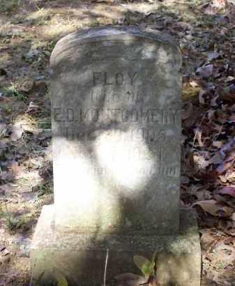 MONTGOMERY, FLOY - Lawrence County, Arkansas | FLOY MONTGOMERY - Arkansas Gravestone Photos