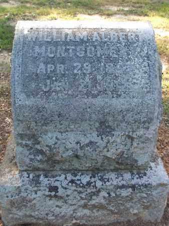 MONTGOMERY, WILLIAM ALBERT - Lawrence County, Arkansas | WILLIAM ALBERT MONTGOMERY - Arkansas Gravestone Photos