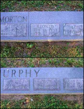 MURPHY, ORVIL - Lawrence County, Arkansas | ORVIL MURPHY - Arkansas Gravestone Photos
