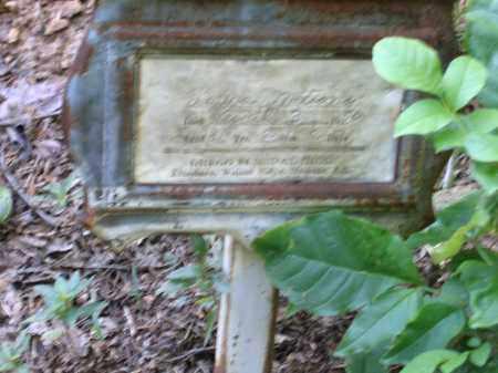 NATION, LAURA - Lawrence County, Arkansas   LAURA NATION - Arkansas Gravestone Photos